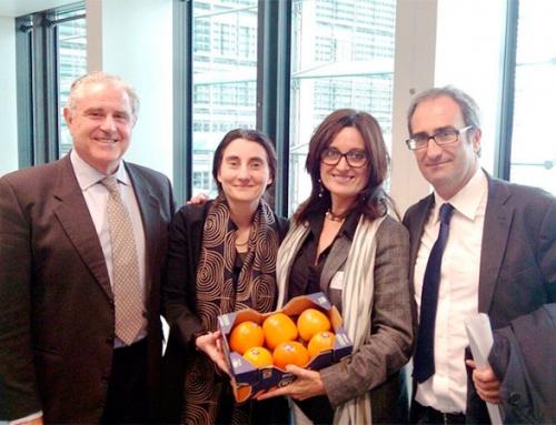 El Grupo Persimon reclama en Bruselas una compensación para el Kaki por el veto Ruso